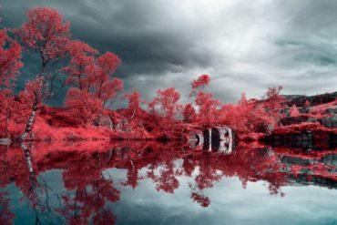 Fotografia infravermelha usando um Filtro IR: Dicas e Técnicas